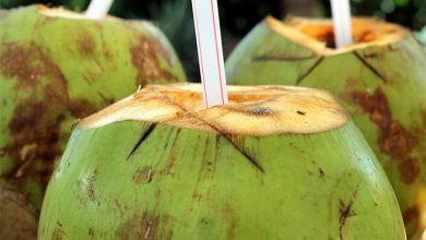 Photo of Advantages and Disadvantages of coconut water: Know details